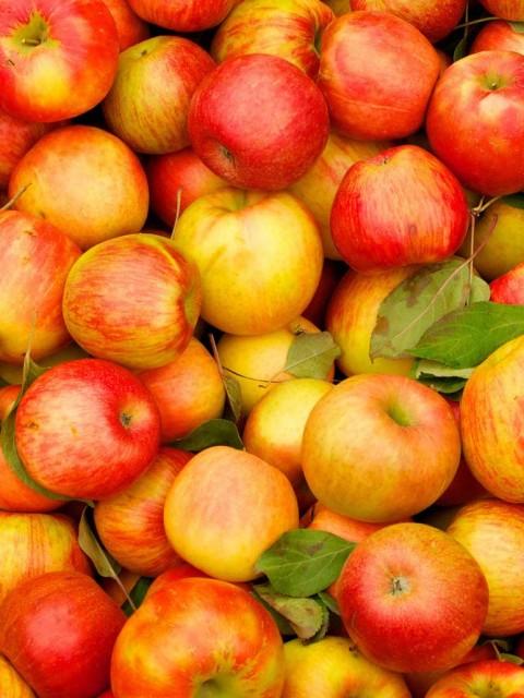 картинка вино из яблочного сока