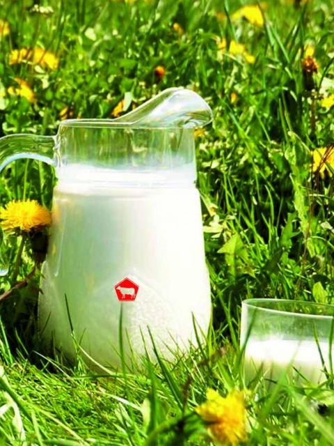 картинка польза молока
