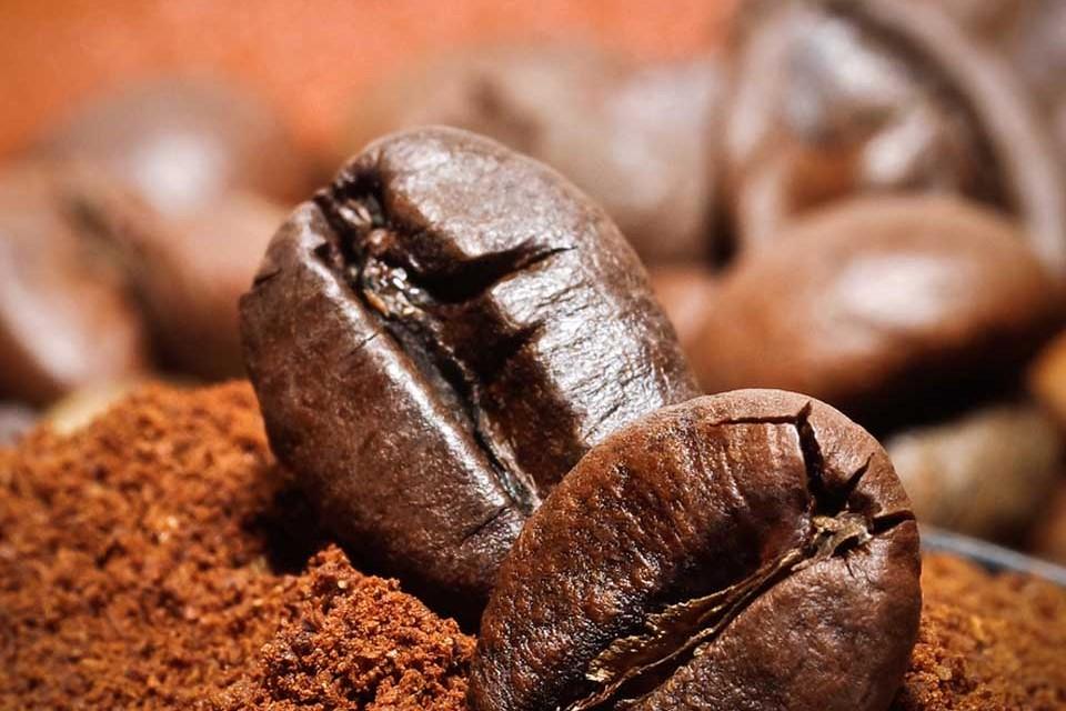 картинка способ сбора кофе