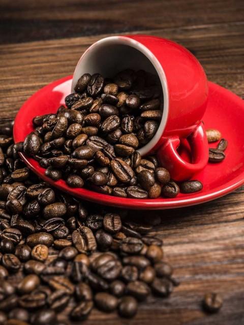 картинка история кофе
